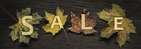 Autumn ad sale with wooden sign for words and inscriptions and b. Eautiful leaves, copy space, top view stock photo