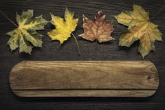 Autumn ad with wooden sign for words and inscriptions and beauti Stock Photography