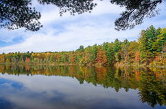 Autumn Adirondack Lake Water Reflections nessun 13 Immagini Stock