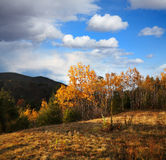 Autumn In The Adirondacks Stock Images