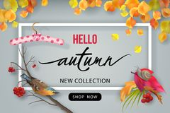 Autumn Advertising Banner Photo stock