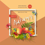 Autumn Advertising Banner Royalty Free Stock Images