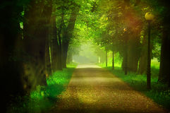 Autumn Afternoon Atmosphere Royalty Free Stock Photos