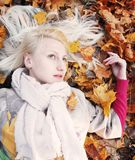 Autumn Again fotografia de stock royalty free