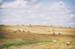 Autumn Agricultural Farm Field Foto de archivo