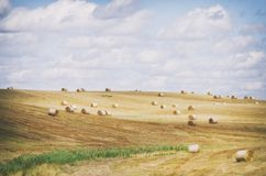 Autumn Agricultural Farm Field Stock Photo