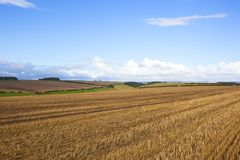 Autumn agriculture Stock Photography