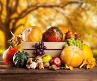 Autumn agriculture products on wood Stock Images