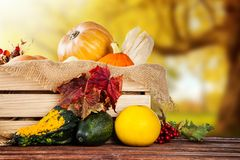 Autumn agriculture products on wood Royalty Free Stock Images