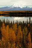 Autumn in Alaska Royalty Free Stock Photography