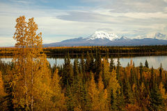 Autumn in Alaska Stock Photo