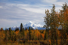 Autumn in Alaska Royalty Free Stock Photos