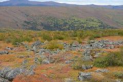 Autumn alaska Royalty Free Stock Image
