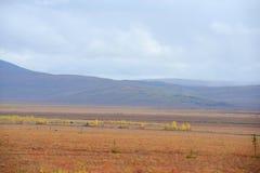 Autumn alaska Stock Images
