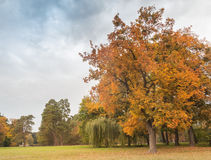 Autumn  in the  Alexandria Park. Royalty Free Stock Images