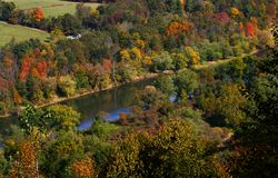 Autumn in Allegheny forest Royalty Free Stock Photos