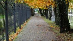 Autumn Alley almacen de metraje de vídeo