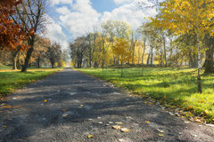 Autumn alley in a city park. Autumn alley in a city park on a background of blue cloudy sky Stock Photo