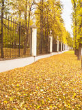 Autumn alley in classic park Royalty Free Stock Photo