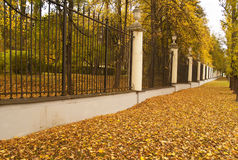 Autumn alley in classic park Stock Image