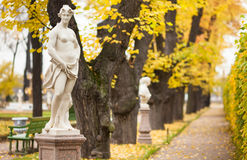 Autumn alley and Euterpe Stock Photography
