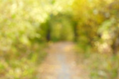 Autumn alley in out-of-focus bokeh Royalty Free Stock Images