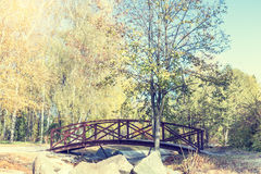 Autumn alley in park with bridge in the sunny day Stock Images