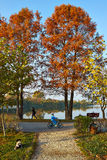 Autumn alley in the park. With people, big trees and the lake Royalty Free Stock Photos