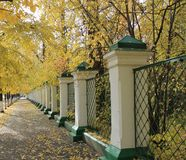 Autumn in alley in Siberia Stock Photos