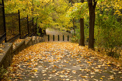 Autumn alley with side fence and steep descent Stock Images