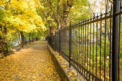 Autumn alley with side fence Royalty Free Stock Images