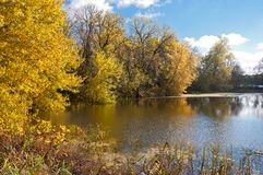 Autumn Along Black Dog Lake Inlet. Vibrant colors of autumn along wooded banks of black dog lake at minnesota valley national wildlife refuge in eagan minnesota Stock Photography
