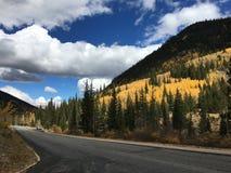 Autumn Along Guanella Pass Royalty-vrije Stock Afbeelding