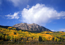 Autumn Along Kebler Pass. Mountain peaks, blue sky, clouds, and aspen trees, photographed during the autumn season, along Kebler Pass road in Colorado's stock images