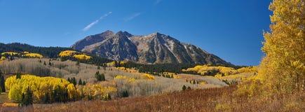 Autumn Along Kebler Pass Stock Images