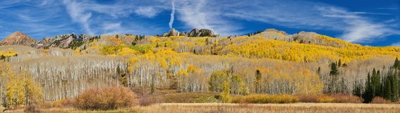 Autumn Along Kebler Pass Stock Image