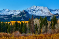 Autumn Along Kebler Pass Royalty Free Stock Images