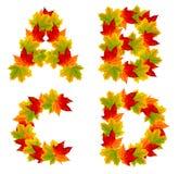 Autumn alphabet Royalty Free Stock Photo