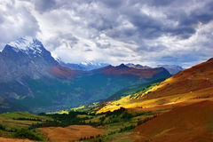 Autumn Alpine meadow Royalty Free Stock Images