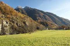 Autumn alpine pasture landscape Royalty Free Stock Photo