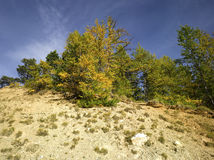 Autumn in Alps Royalty Free Stock Photography
