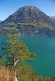 Autumn in alps Stock Image