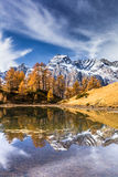 Autumn in the alps  Alpe Devero Italy Royalty Free Stock Images