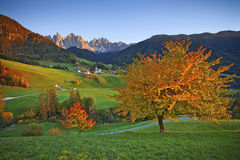 Autumn in Alps. Beautiful St. Magdalena village in a gorgeous Funes Valley located in Italian Alps during autumn sunset royalty free stock photography