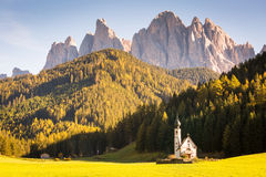 Autumn in the Alps. Alps, Italy, Santa Magdalena Church with Dolomites Odle in background, forest and landscape Royalty Free Stock Photos