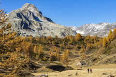 Autumn in the alps Royalty Free Stock Photography