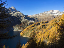Autumn in the alps Royalty Free Stock Photo