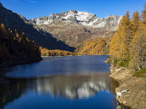 Autumn in the alps Royalty Free Stock Photos