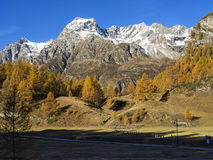 Autumn in the alps Stock Images