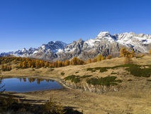 Autumn in the alps Stock Image